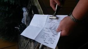 Probe auf Papier